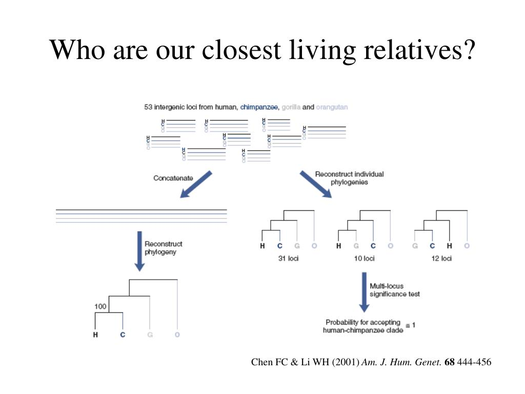 Who are our closest living relatives?