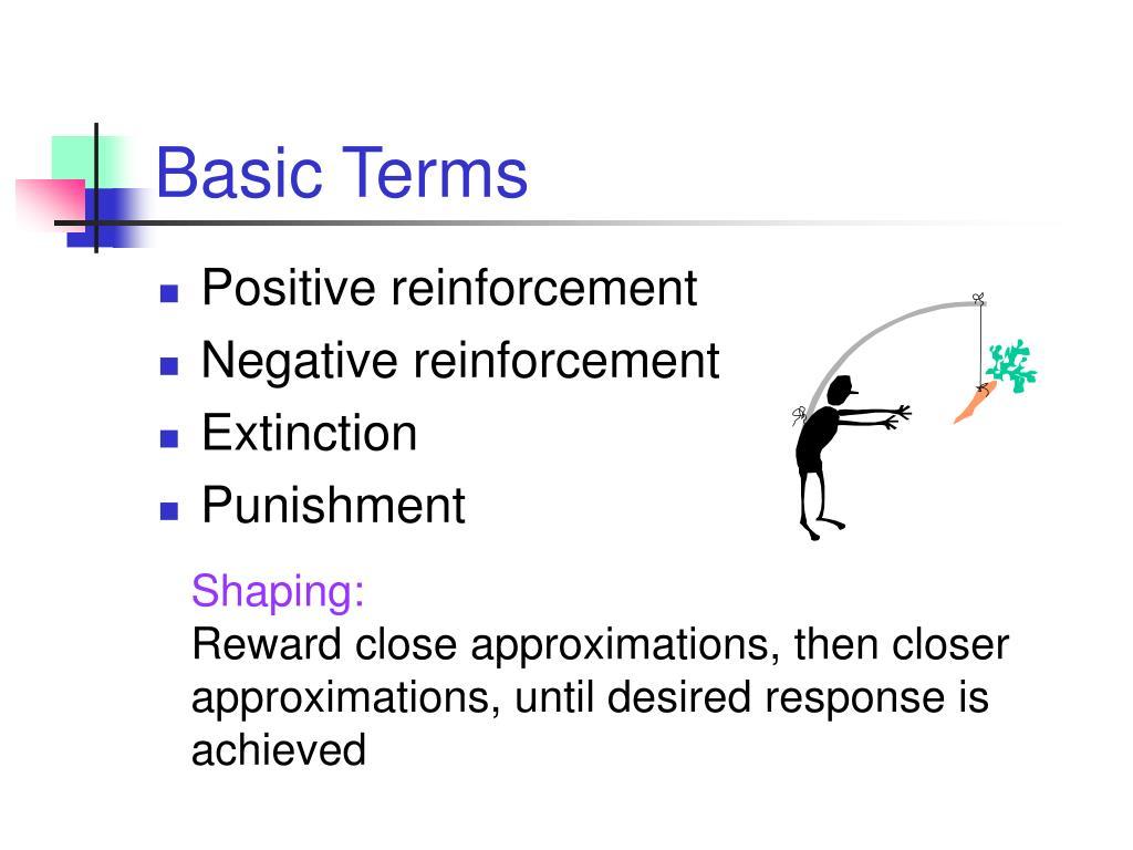 Basic Terms