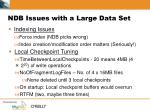ndb issues with a large data set10