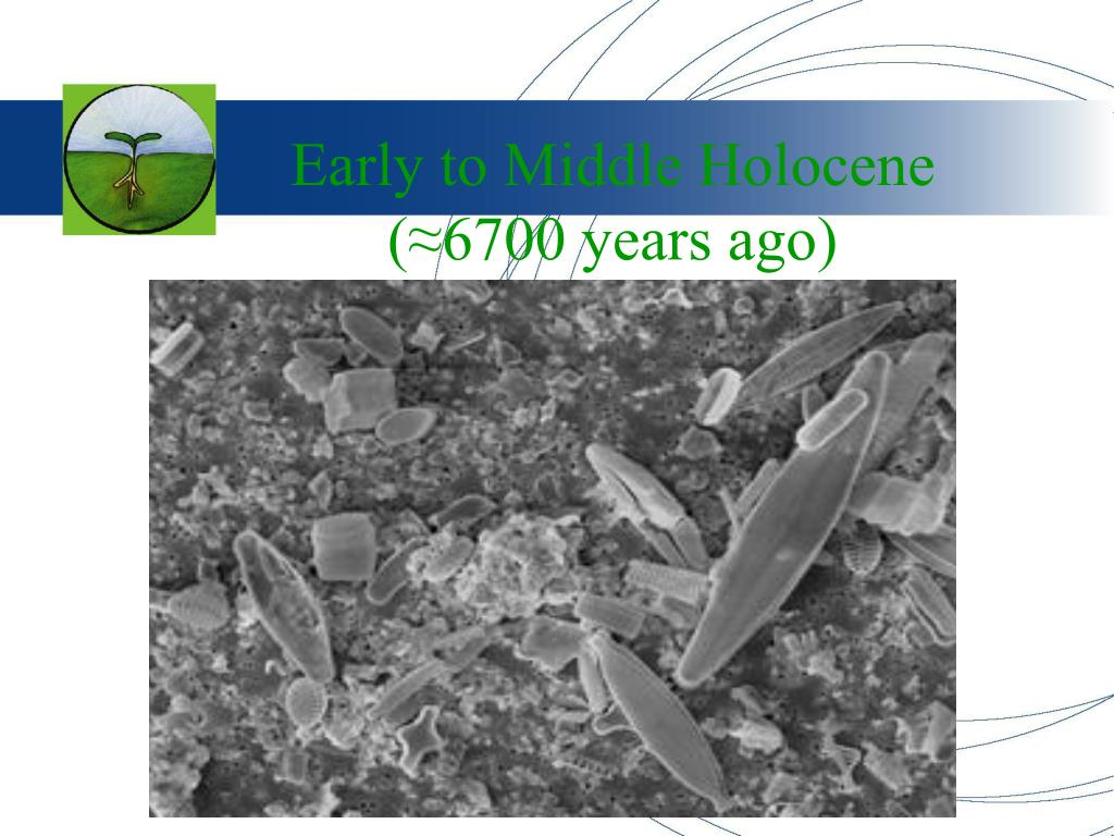 Early to Middle Holocene