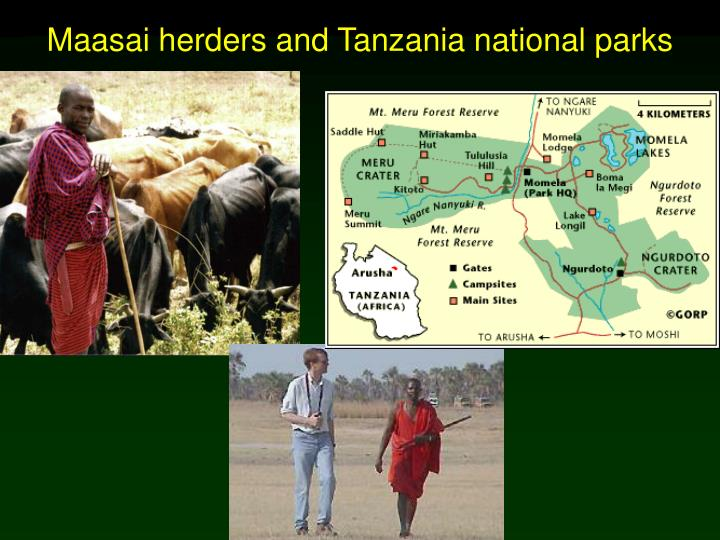 Maasai herders and Tanzania national parks