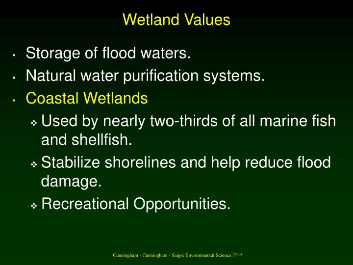Wetland Values