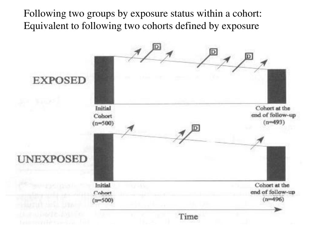 Following two groups by exposure status within a cohort:
