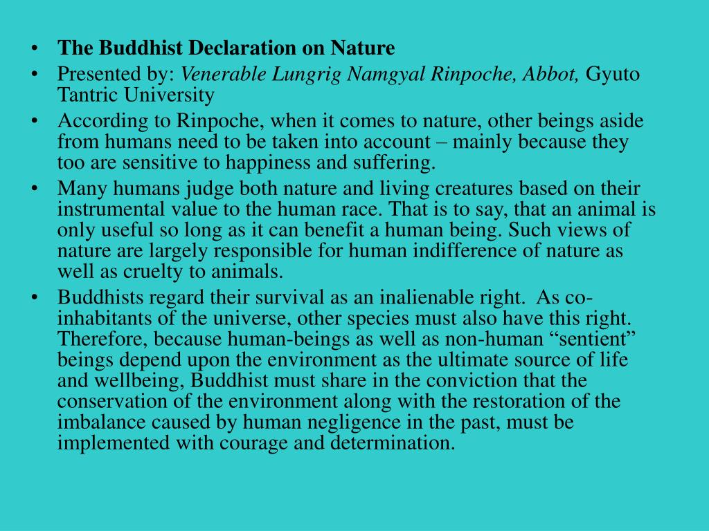 The Buddhist Declaration on Nature