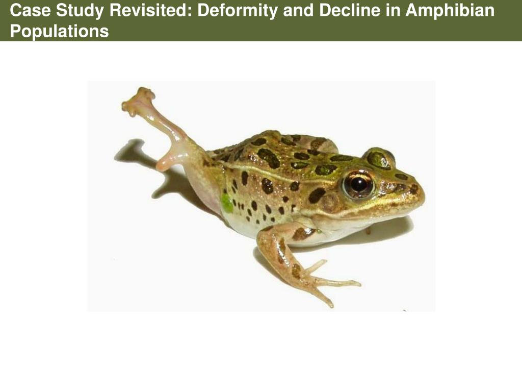 Case Study Revisited: Deformity and Decline in Amphibian Populations