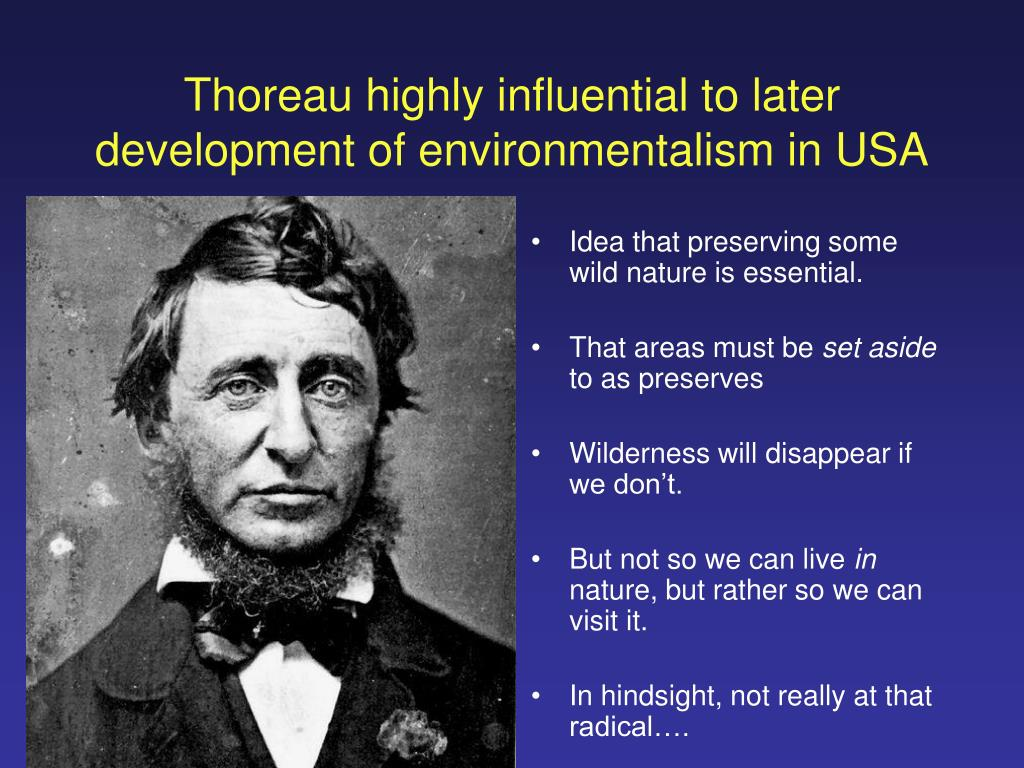Thoreau highly influential to later development of environmentalism in USA