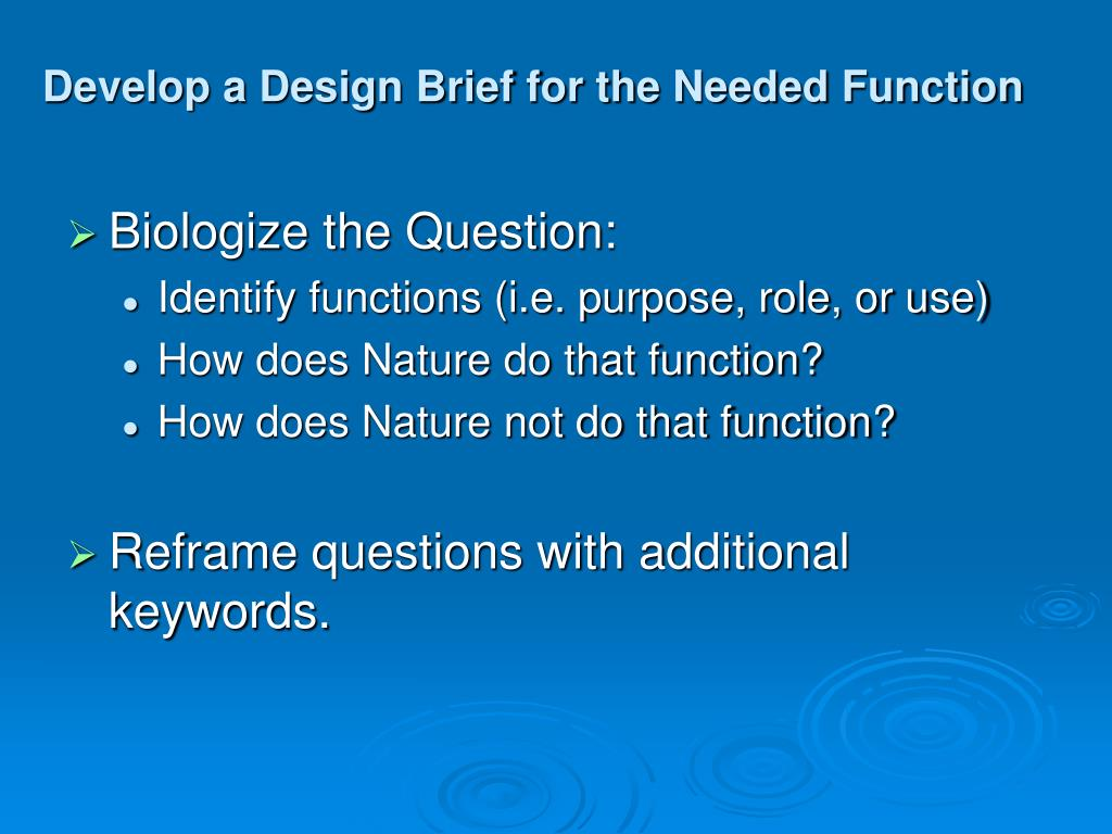 Develop a Design Brief for the Needed Function