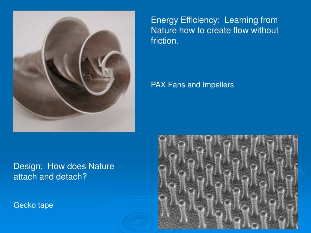 Energy Efficiency:  Learning from Nature how to create flow without friction.