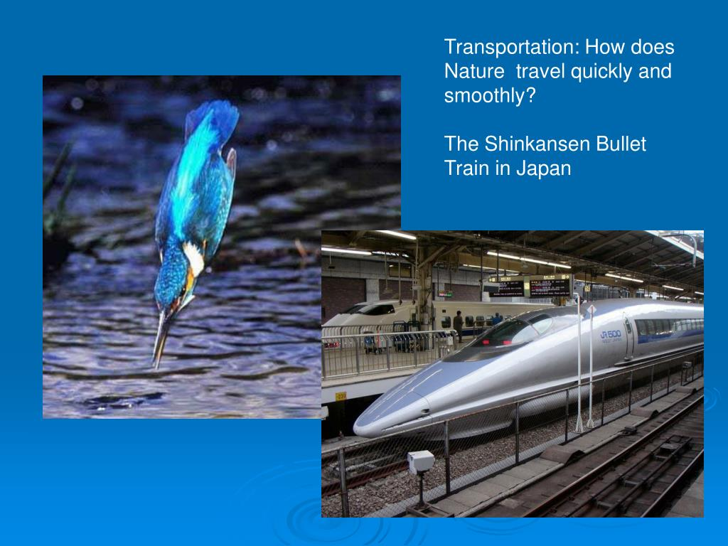 Transportation: How does Nature  travel quickly and smoothly?