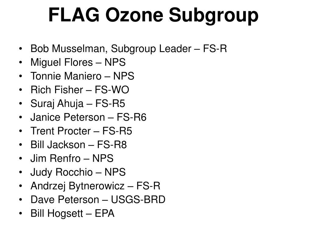 FLAG Ozone Subgroup