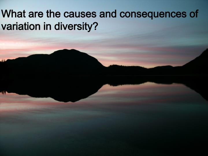 What are the causes and consequences of variation in diversity?