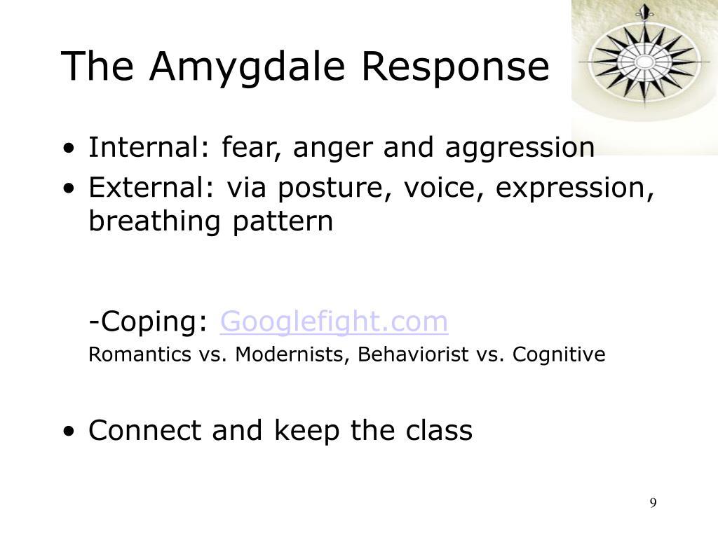The Amygdale Response