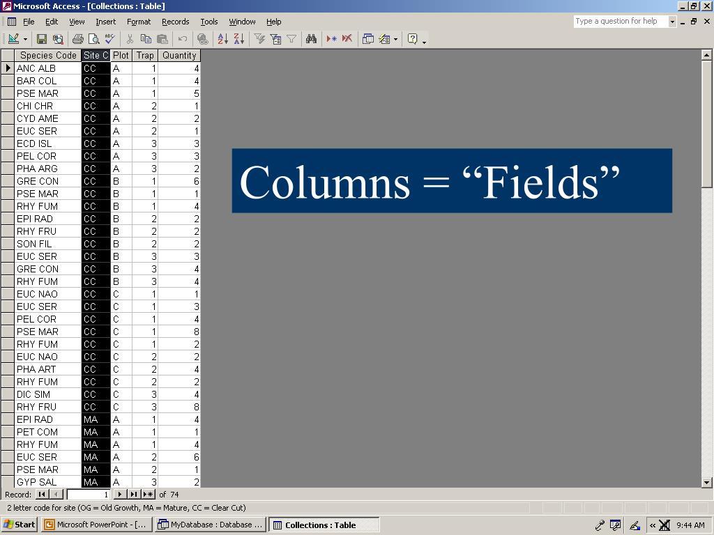 "Columns = ""Fields"""