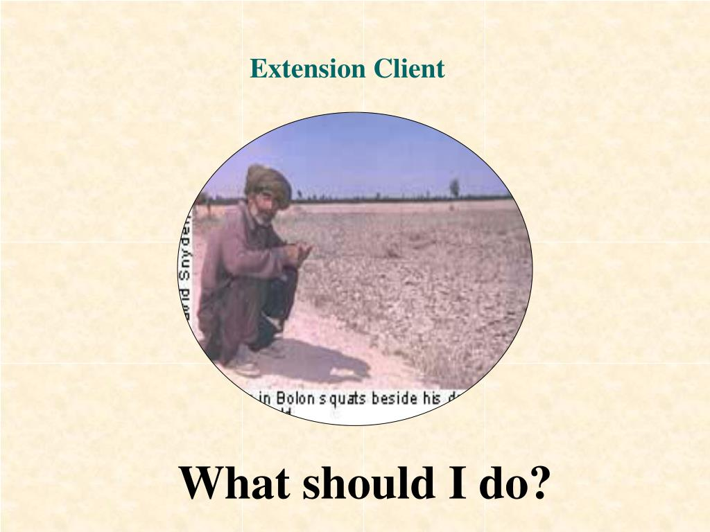 Extension Client