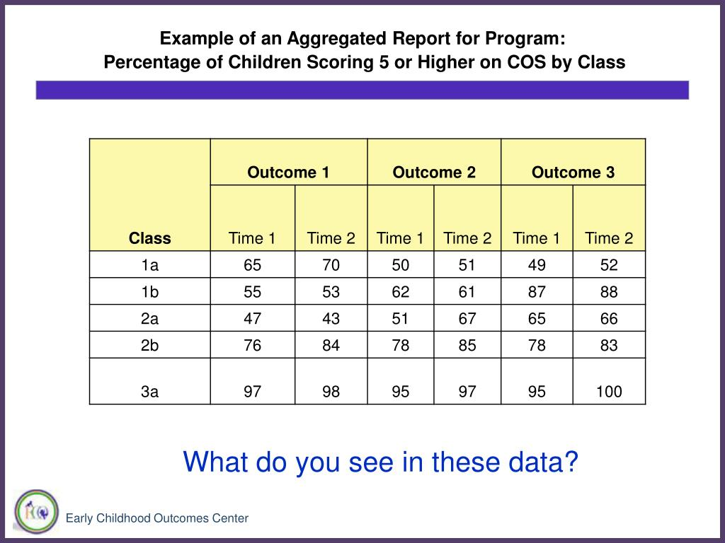 Example of an Aggregated Report for Program