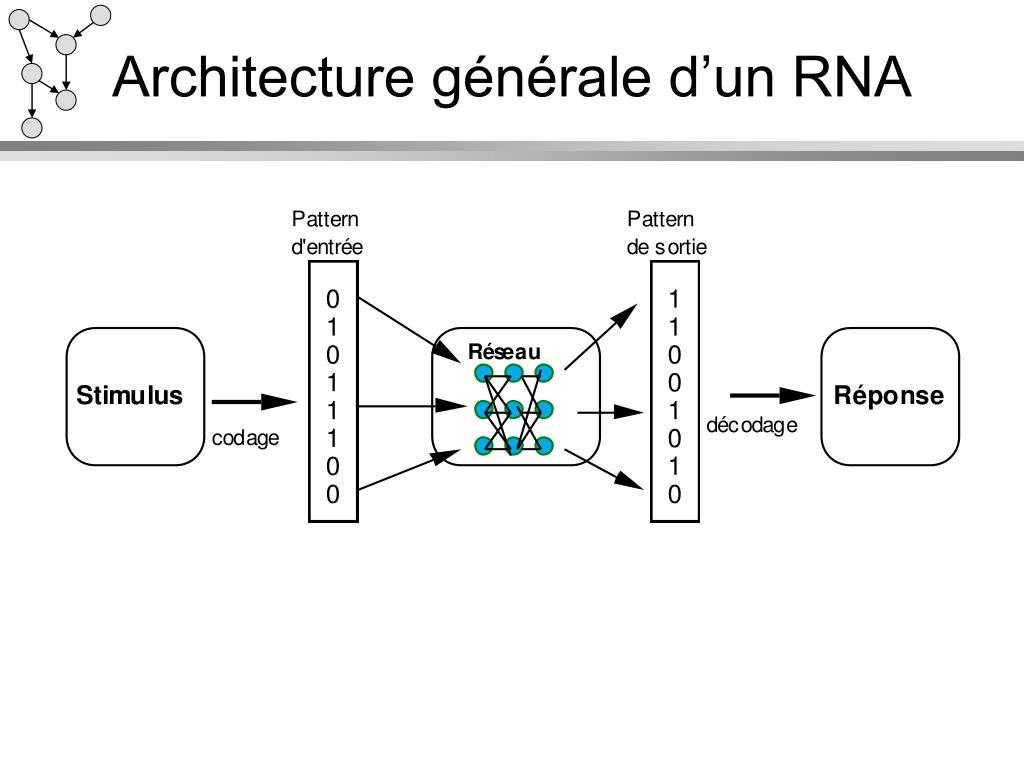 Architecture générale d'un RNA