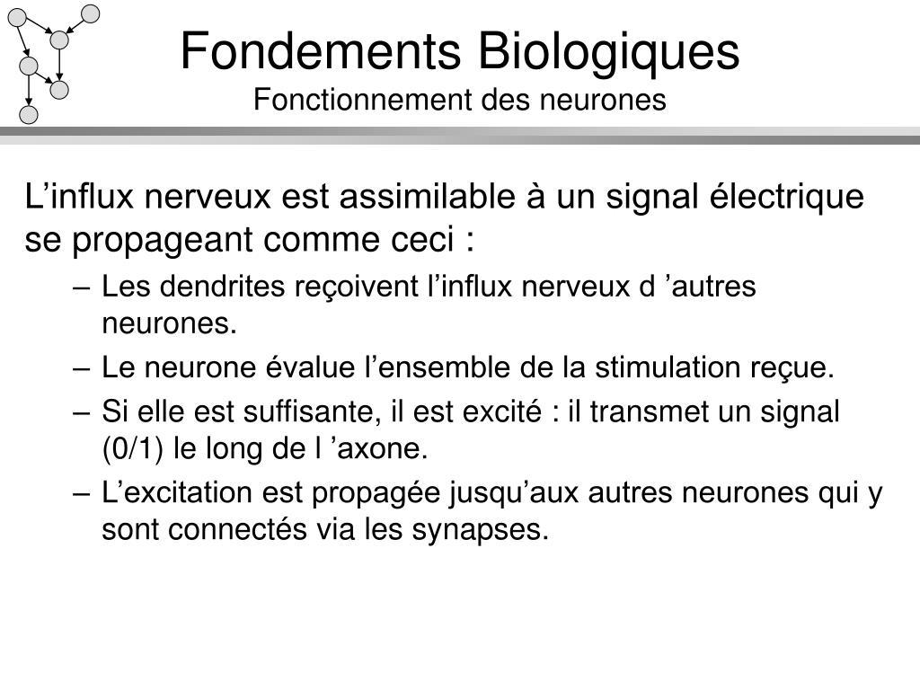 Fondements Biologiques