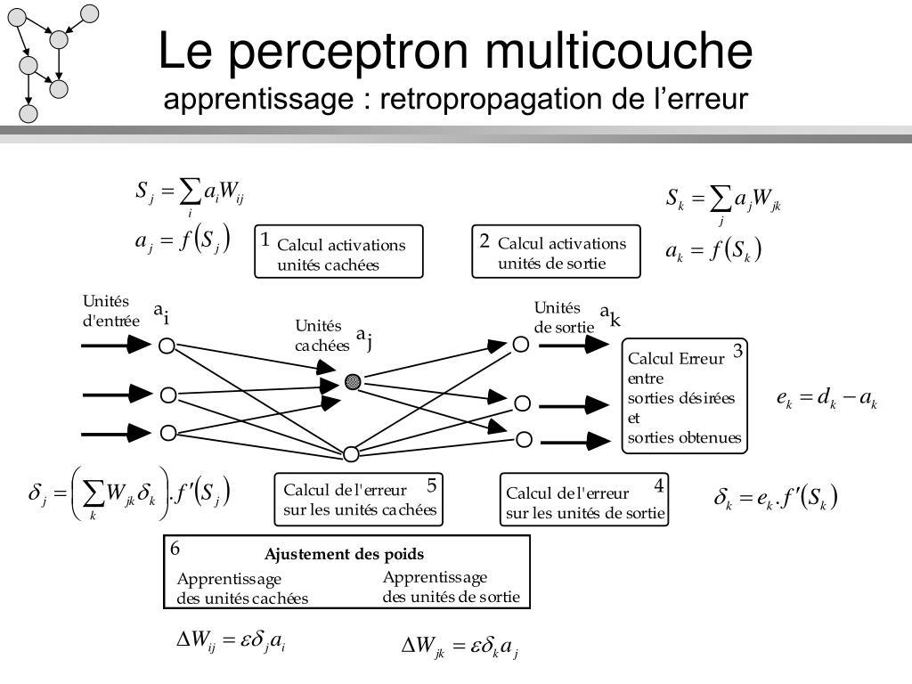Le perceptron multicouche