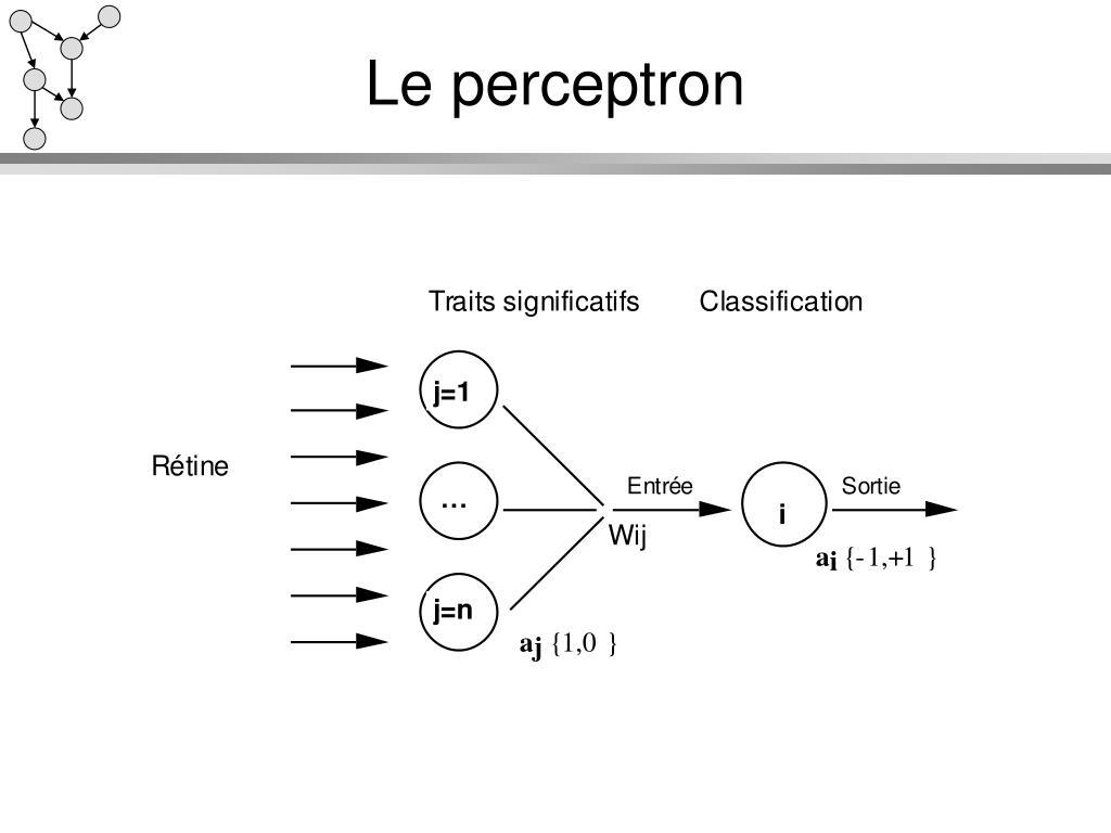 Le perceptron