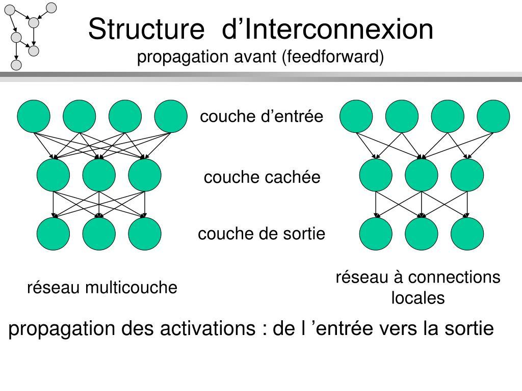 Structure d'Interconnexion
