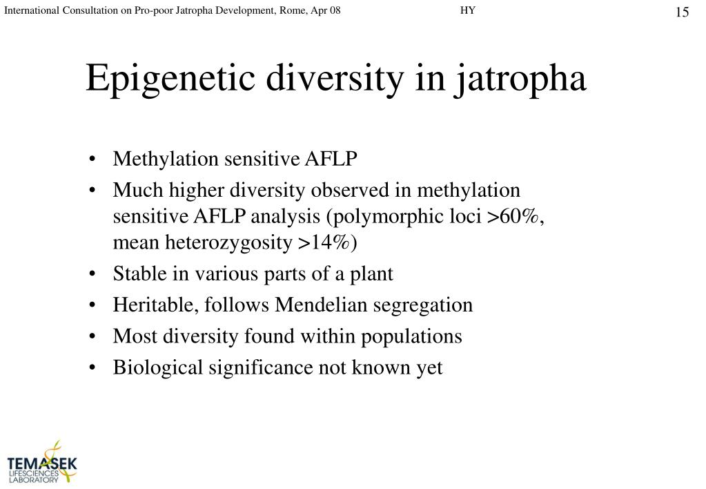 Epigenetic diversity in jatropha