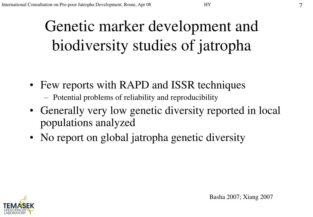 Genetic marker development and biodiversity studies of jatropha