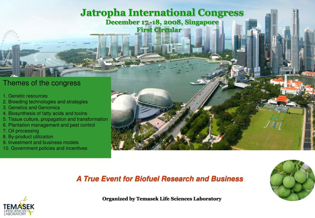 Jatropha International Congress