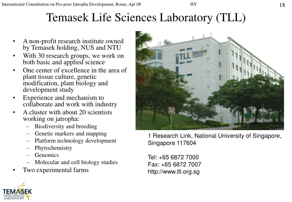 Temasek Life Sciences Laboratory (TLL)