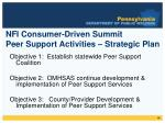 nfi consumer driven summit peer support activities strategic plan