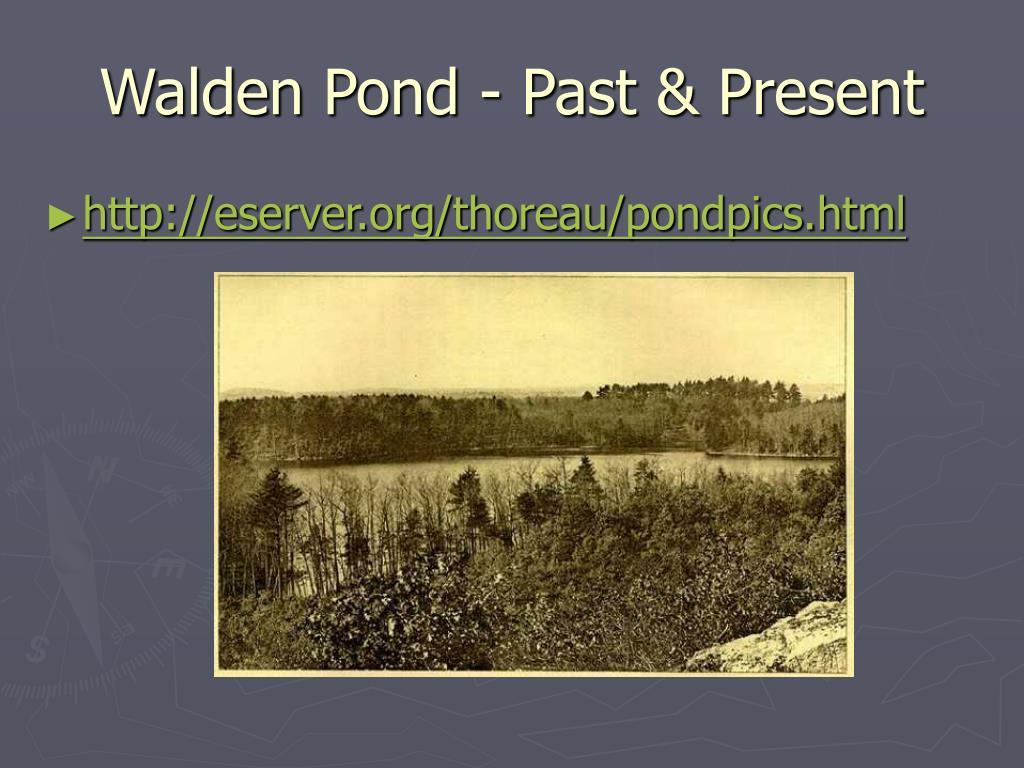 Walden Pond - Past & Present