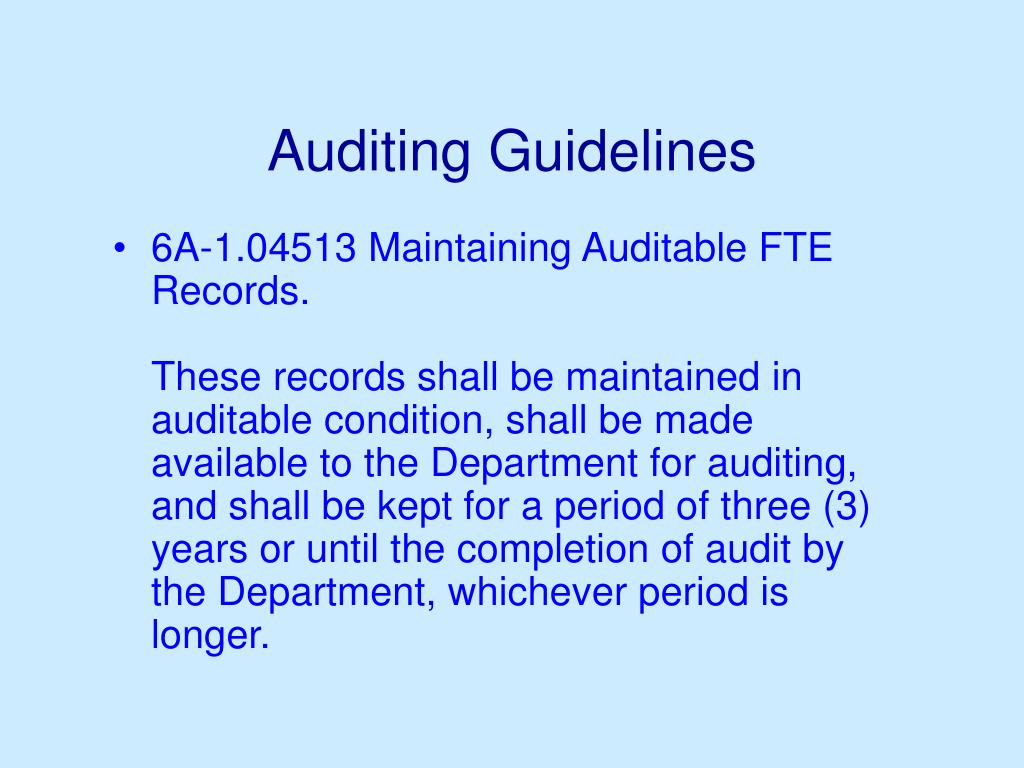 Auditing Guidelines