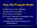 how the program works10