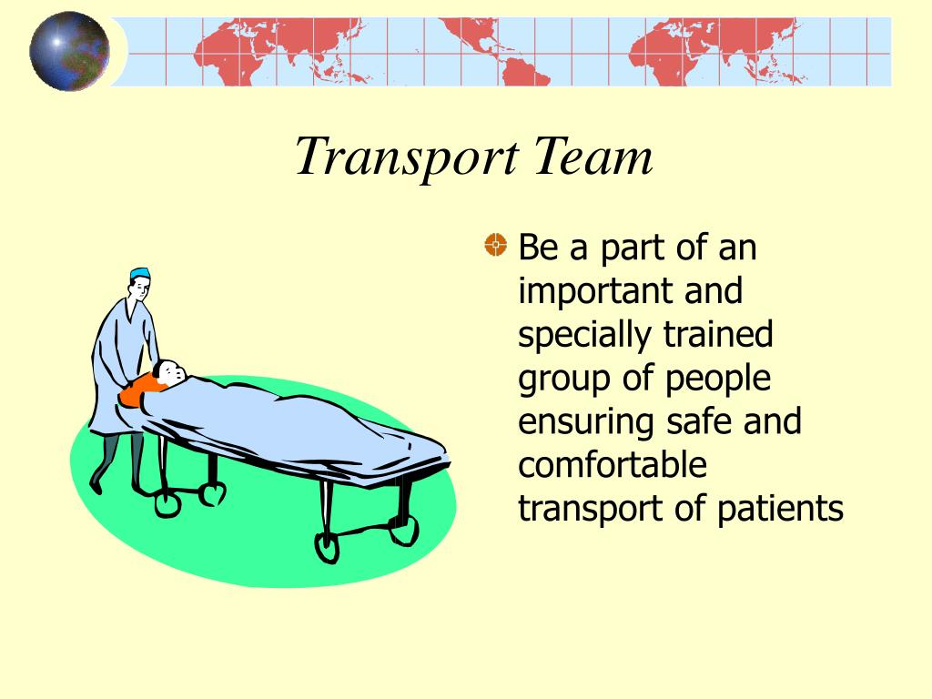 Transport Team