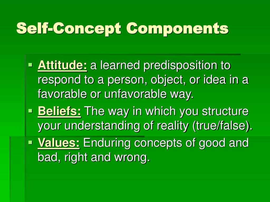 Self-Concept Components
