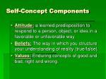 self concept components