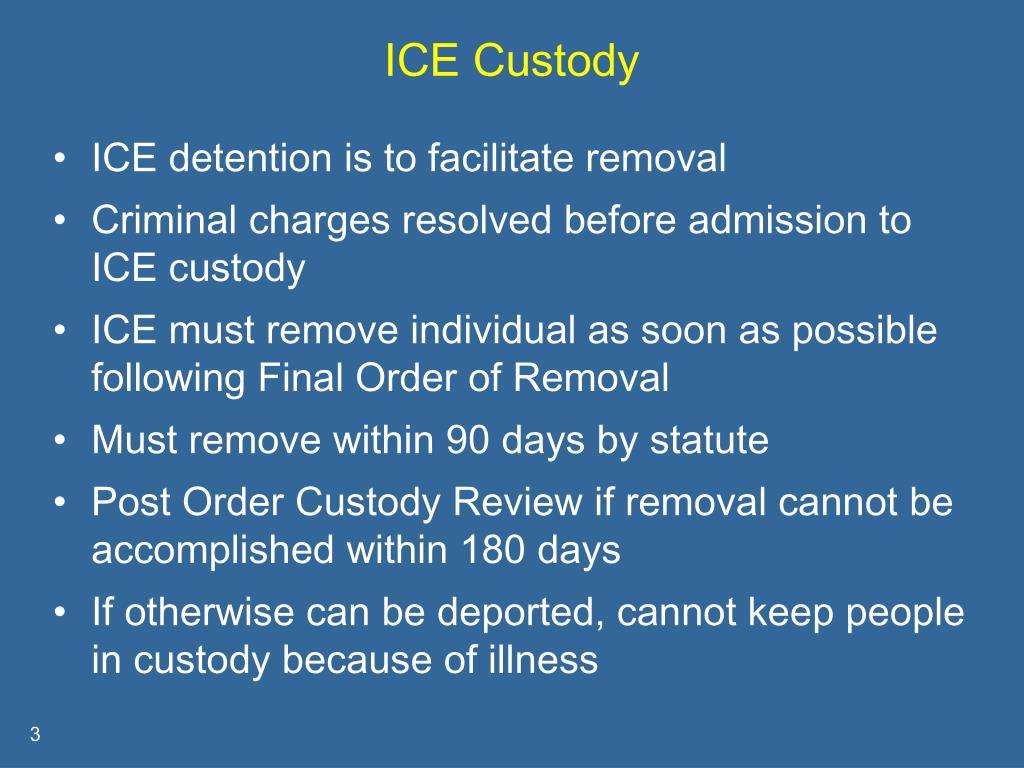 ICE Custody
