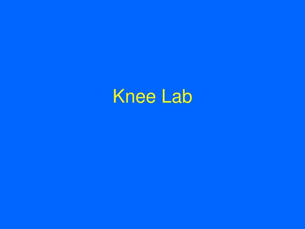 Knee Lab