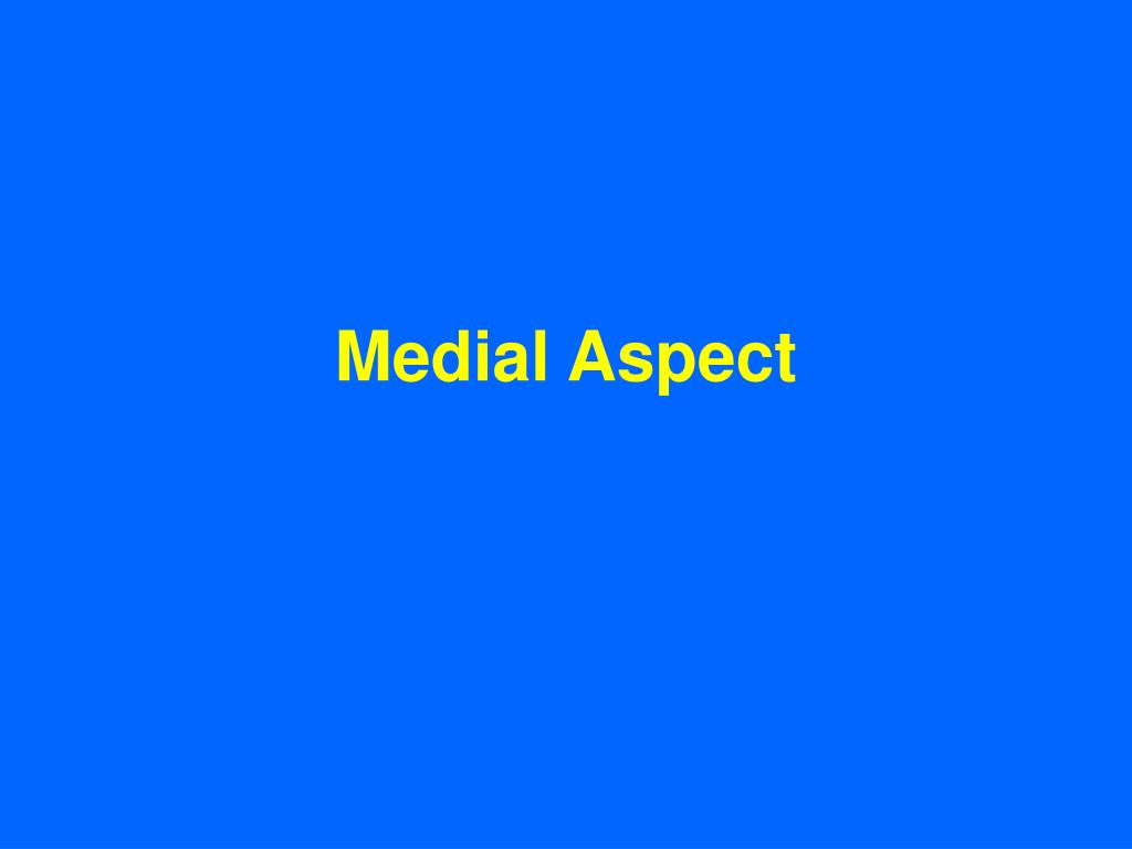 Medial Aspect