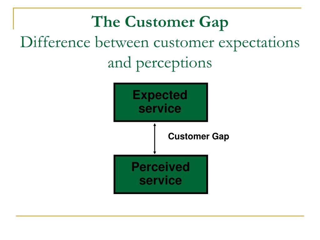 The Customer Gap