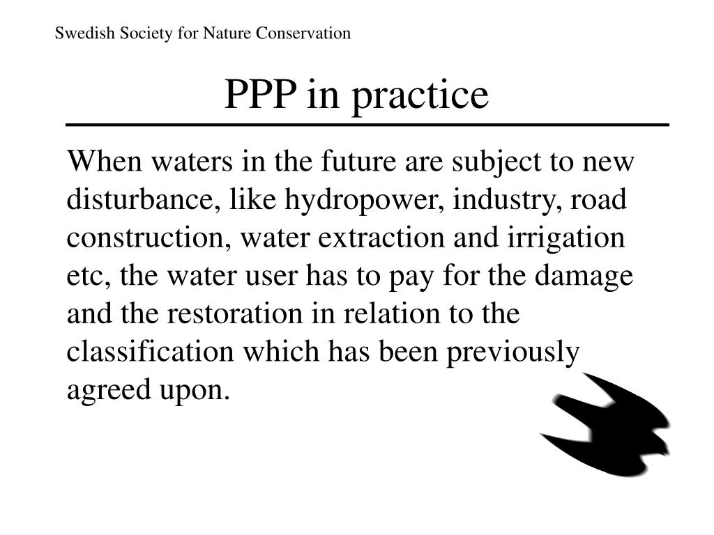 PPP in practice