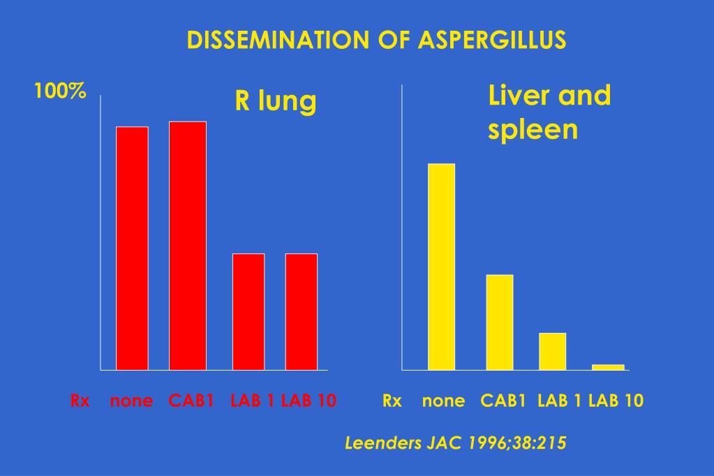 DISSEMINATION OF ASPERGILLUS