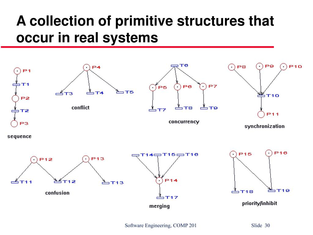 A collection of primitive structures that occur in real systems