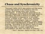 chaos and synchronicity31