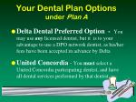 your dental plan options under plan a