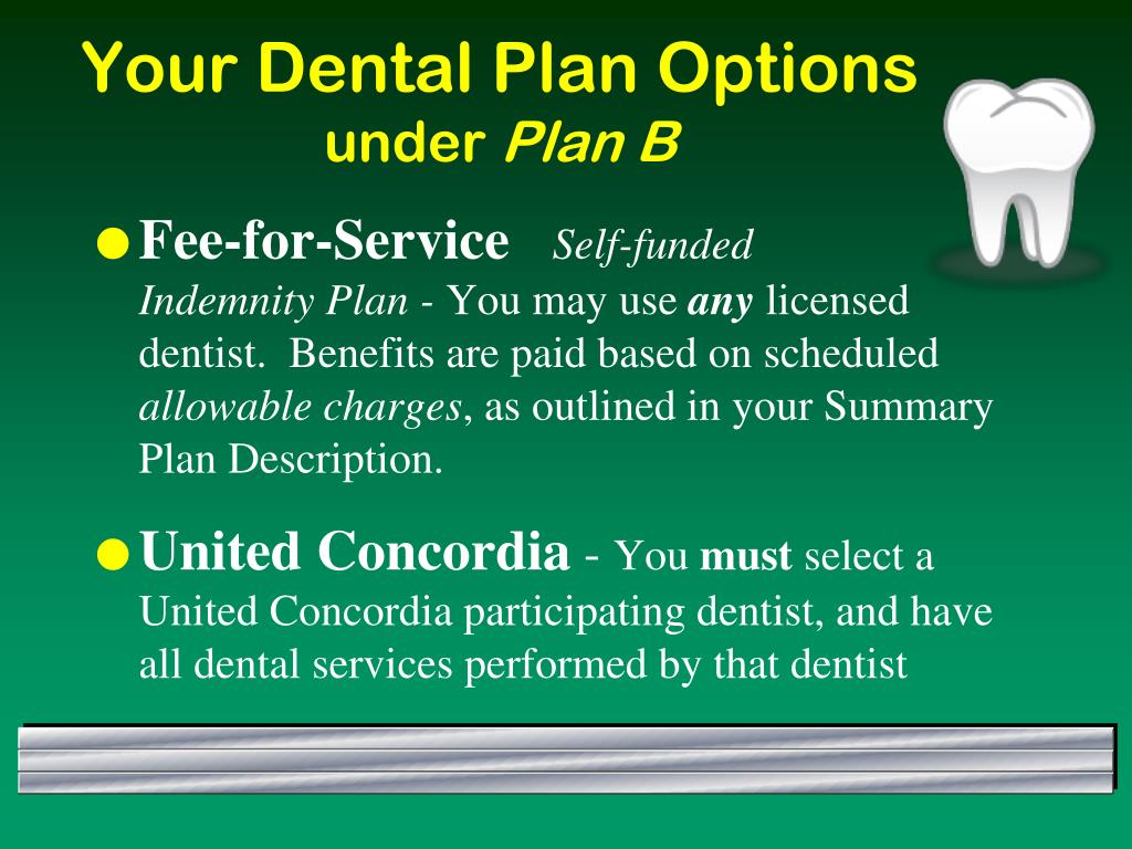 Your Dental Plan Options