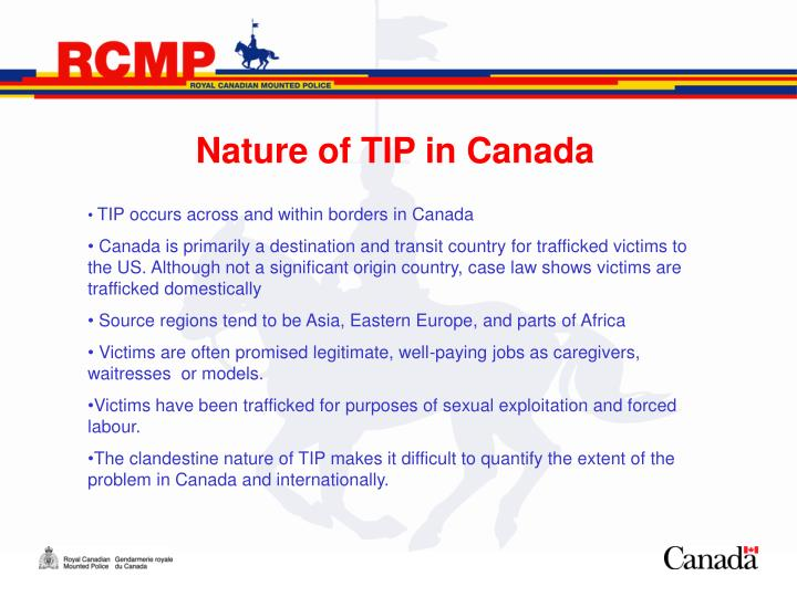 Nature of TIP in Canada