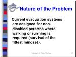 nature of the problem1