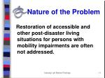 nature of the problem2