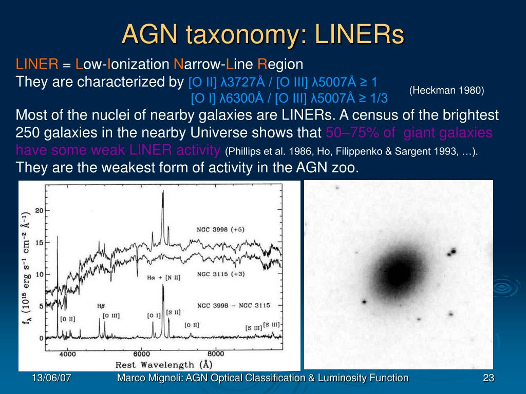 AGN taxonomy: LINERs