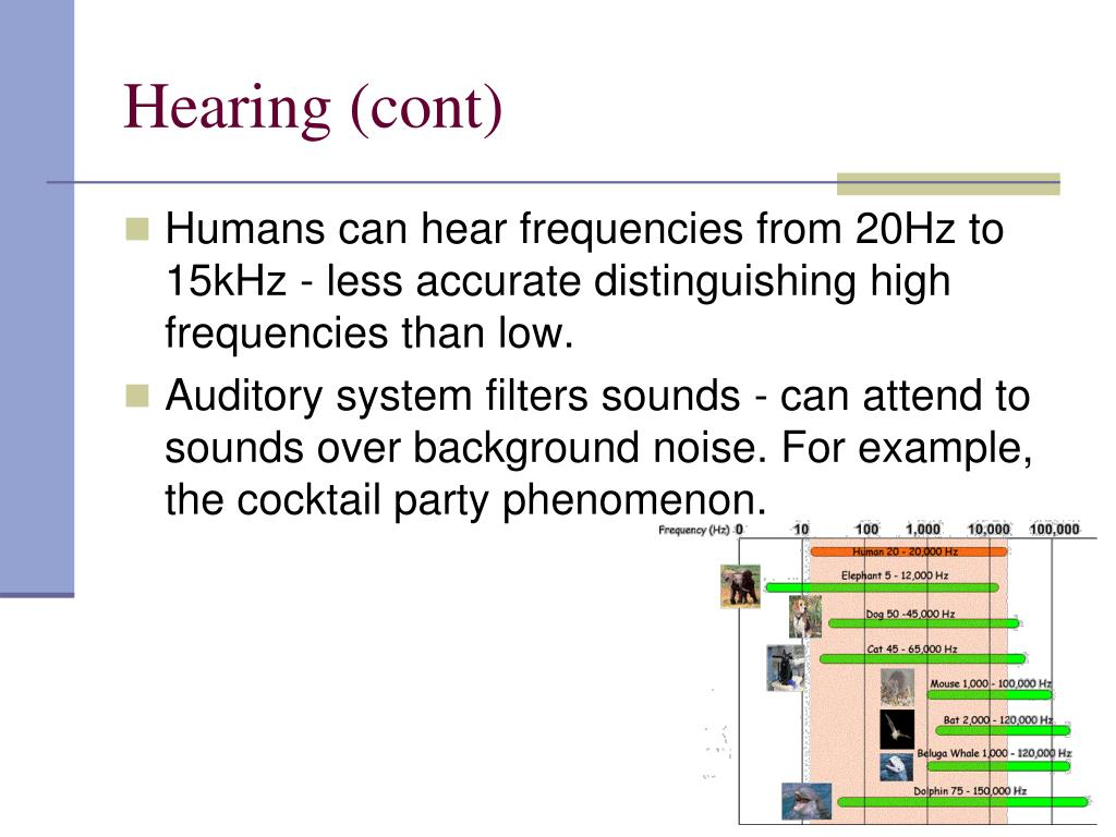 Hearing (cont)